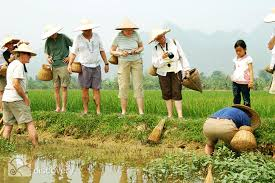 Vietnam Agricultural and Farm Tours